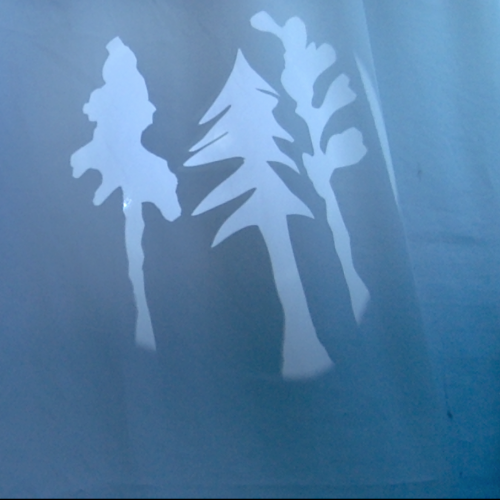 shadow trees unfinished, silhouette image of three old trees, part of a forest: an evergreen, a maple, an old spruce.