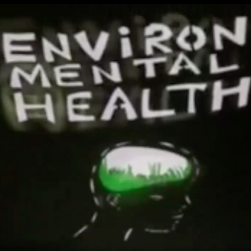 Environmental Health, Environmental health is carved in white letters on a black background. A hairless human head is also carved out of the black space. A bean or brain shaped space is carved out from the head where green grass and open sky fill the space.