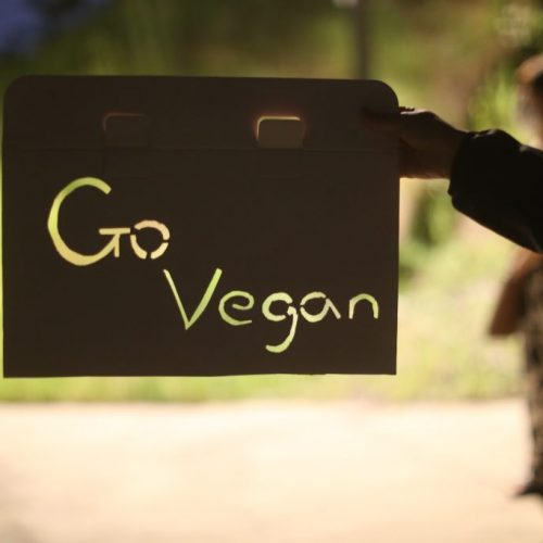 go vegan, Go vegan is carved into a piece of cardboard, held up so that the light from a streetlight shines through. In the background, a dusky sky sits over a green hill and a masked person in black and white patterned pants stands on pavement. The streetlight throws their shadow towards us.