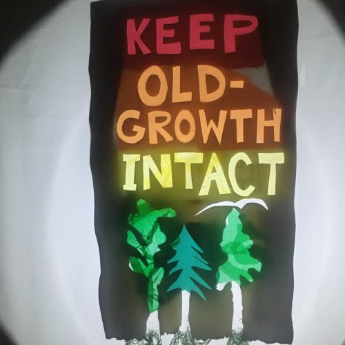 """keep old-growth INTACT, a shadow sign with bold rainbow letters saying """"Keep Old-Growth Intact"""""""